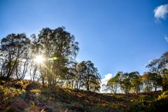 Autumn Landscape in Staffordshire, England. A beautiful autumn landscape lookng across Cannock Chase Area of Outstanding Natural Beauty Stock Photography