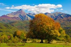 Beautiful autumn landscape in the Monti della Laga. Abruzzo - Italy Stock Image
