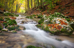 Beautiful autumn landscape with mountain river Royalty Free Stock Images