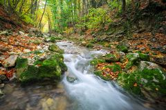 Beautiful autumn landscape with mountain river, stones stock images