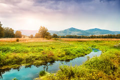 Beautiful autumn landscape in the mountains. At sunset Royalty Free Stock Image