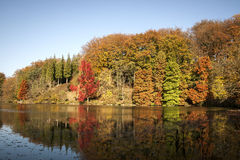 Beautiful autumn landscape Royalty Free Stock Photography