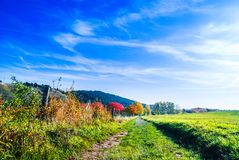 Beautiful autumn landscape next to Wernigerode in Germany. View on Beautiful autumn landscape next to Wernigerode in Germany royalty free stock photography