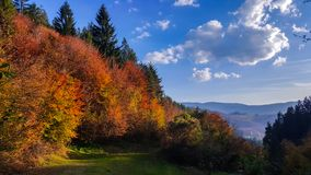 The beautiful autumn landscape. October colors. The beauty of autumn colors of trees. stock photos