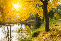 Beautiful autumn landscape with river, bridge and  trees. Stock Photography