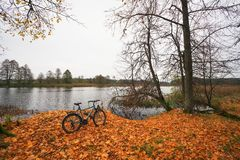 Beautiful autumn landscape with a river, a lone bicycle and fall Royalty Free Stock Images