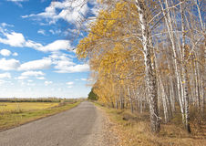 Beautiful autumn landscape with a road on a clear day Stock Image