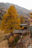 Beautiful autumn landscape with some old swiss chalets in Zermatt area. Beautiful autumn mountain landscape in Swiss Alps, with some old swiss chalets in Zermatt stock photo