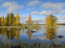 Beautiful autumn landscape. In Sweden Stock Photos