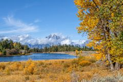 Beautiful Autumn Landscape in the Tetons. A scenic landscape of the tetons in autumn Royalty Free Stock Photos