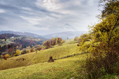 Beautiful autumn landscape in Transylvania, Romania Royalty Free Stock Photos