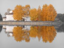 Beautiful autumn landscape of trees reflected in water Royalty Free Stock Photo