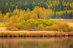 Beautiful autumn landscape Stock Image