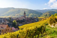 Free Beautiful Autumn Landscape With Vineyards Near The Historic Village Of Riquewihr, Alsace, France - Europe. Colorful Travel And Royalty Free Stock Photos - 143780218