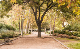 Beautiful autumn in Madrid. Autumn colors in a park in Madrid, Spain Royalty Free Stock Image
