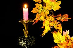 Autumn maple leaf fall, they are different color, burning vintage candle. stock image
