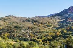 Beautiful autumn mountain .Autumn landscape. Beautiful  autumn landscape with colorful yellow trees Royalty Free Stock Photo