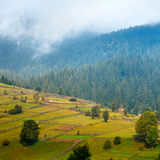 Beautiful autumn mountain landscape with mist and animal corral Royalty Free Stock Image