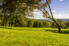 Autumn`s scent. Delaware Water Gap, PA. Beautiful autumn mountain view featuring tree and grass on the foreground and mountains on the background. Photo was stock photo