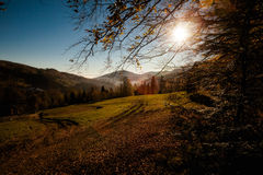 Beautiful autumn mountain woods landscape Stock Photo
