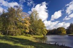 Beautiful autumn nature. Beautiful autumn trees, pond and sky Stock Photos