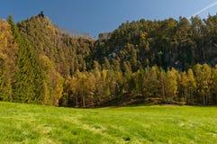 Beautiful Autumn Nature Stock Images