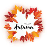 Beautiful Autumn paper cut leaves. Hello Autumn. September flyer template. Maple shape frame. Space for text. Origami Stock Photo