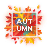 Beautiful Autumn paper cut leaves. Hello Autumn. September flyer template. Square frame. Space for text. Origami Foliage. Maple, oak. Fall poster background Stock Photos