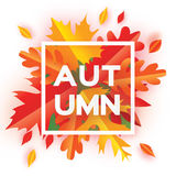 Beautiful Autumn paper cut leaves. Hello Autumn. September flyer template. Royalty Free Stock Images