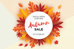 Beautiful Autumn paper cut leaves. Sale. September flyer template. Circle frame. Space for text. Origami Foliage. Maple. Oak. Fall poster background. Vector Royalty Free Stock Photos