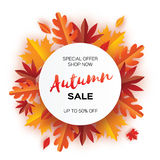 Beautiful Autumn paper cut leaves. Sale. September flyer template. Circle frame. Space for text. Origami Foliage. Maple Stock Photo
