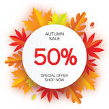 Beautiful Autumn paper cut leaves. Sale. September flyer template. Circle frame.  Stock Image