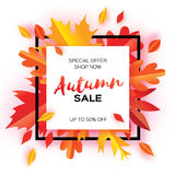 Beautiful Autumn paper cut leaves. Sale. September flyer template. Square frame. Space for text. Origami Foliage. Maple. Oak. Fall poster background. Vector Royalty Free Stock Images