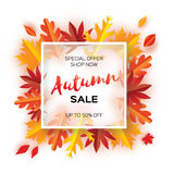 Beautiful Autumn paper cut leaves. Sale. September flyer template. Square frame. Space for text. Origami Foliage. Maple Stock Images