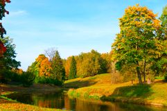 Beautiful autumn park Royalty Free Stock Image