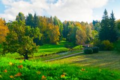 Beautiful autumn park Stock Photo