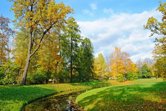 Beautiful autumn park Royalty Free Stock Images