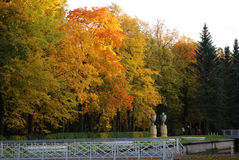 Beautiful autumn park. With a white bridge Royalty Free Stock Photos