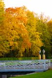 Beautiful autumn park. With a white bridge Stock Photography