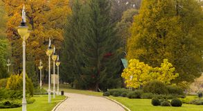 Beautiful autumn park alley. with yellow leaves on the trees Stock Photo