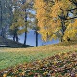 Beautiful autumn park Stock Photography