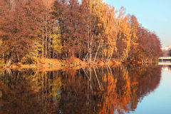 Beautiful autumn park. Autumn in Minsk. Autumn trees and leaves. Autumn Landscape.Park in Autumn. Mirror reflection of trees in wa Stock Image