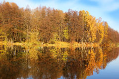 Beautiful autumn park. Autumn in Minsk. Autumn trees and leaves. Autumn Landscape.Park in Autumn. Mirror reflection of trees in wa Royalty Free Stock Image
