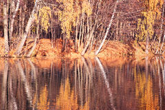 Beautiful autumn park. Autumn in Minsk. Autumn trees and leaves. Autumn Landscape.Park in Autumn. Mirror reflection of trees in wa Stock Photography