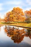 Beautiful autumn park. Autumn in Minsk. Autumn trees and leaves. Autumn Landscape.Park in Autumn. Mirror reflection of trees in wa Stock Photos