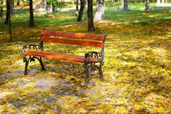 Beautiful autumn park and benche. Beautiful autumn park with paths and benches Royalty Free Stock Images