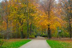 Beautiful autumn park Stock Photography