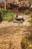 Beautiful autumn park. Golden foliage. Gorgeous landscape. Vertical royalty free stock images