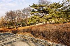 Beautiful autumn park. Gorgeous colorful landscape. Horizontal stock images