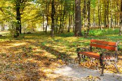 Beautiful autumn park with paths and benches. Bright yellow leaves and a bench illumination by solar beams Royalty Free Stock Images